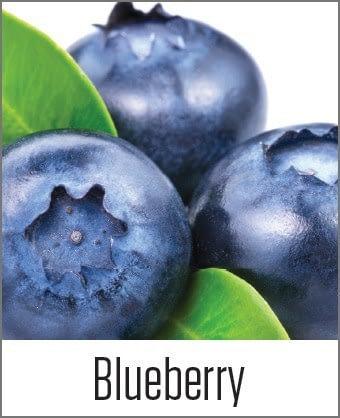MOA Blueberry